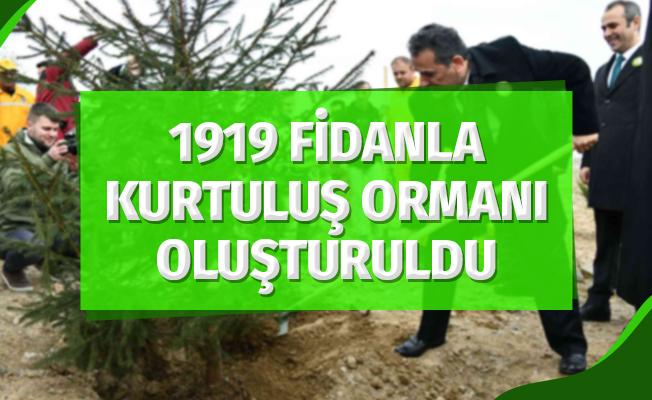"""1919 Fidanla """"100 Yıl Kurtuluş Ormanı"""" Oluşturuldu"""