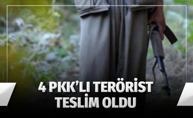 4 PKK'lı Terörist Teslim Oldu