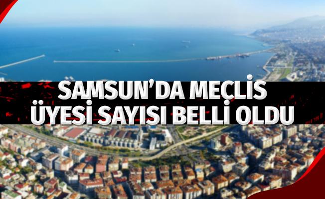 Samsun'da Meclis Üyesi Sayıları Belli Oldu