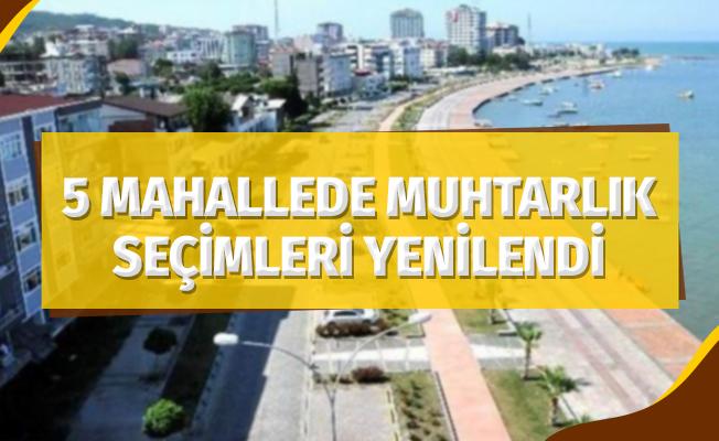 5 mahallede muhtarlık seçimleri yenilendi