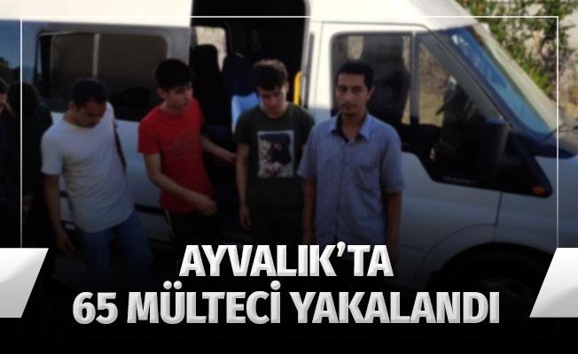 Ayvalık'ta 65 mülteci yakalandı