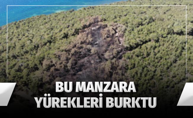 Heybeliada'da ormanda çıkan yangının sebep olduğu zarar havadan görüntülendi
