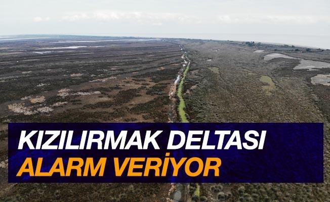 Kızılırmak Deltası alarm veriyor