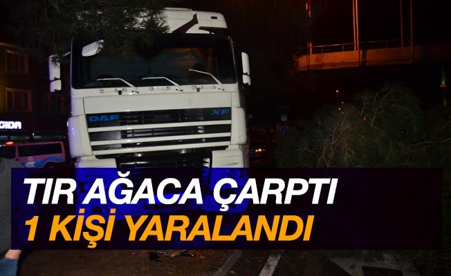 Samsun'da tır ağaca çarptı: 1 yaralı