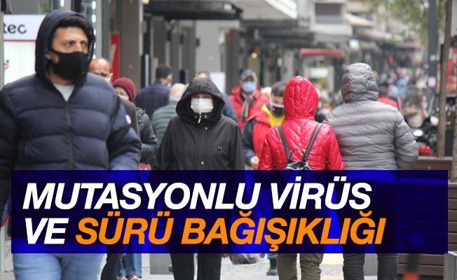 'Samsun'da mutasyonlu virüs ve sürü bağışıklığı'