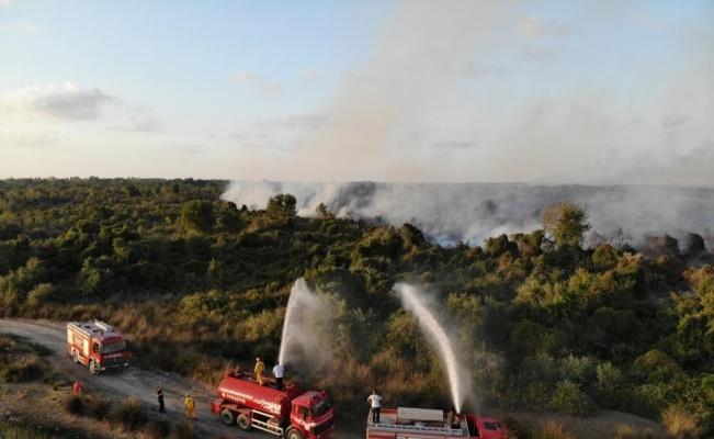 Samsun ormanlarında çıkan 22 yangında 21,28 ha örtü zarar gördü