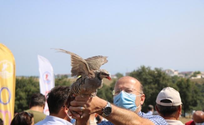 OMÜ'de kampüse keklik ve sülün salındı