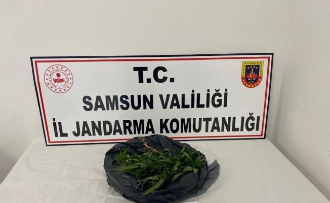 Samsun'da 540 gram kubar esrar ele geçirildi