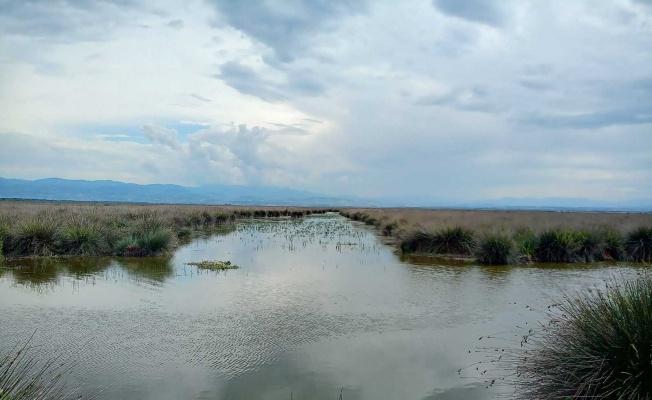 "Kaymakamdan muhtarlara 'sulama suyu' uyarısı: ""Suyu fosur fosur akıtma devri bitti"""