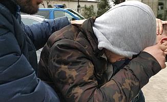 Satışa hazır bonzai ile yakalanan şahıs tutuklandı