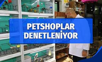 Ev ve süs hayvanı satış yerleri denetleniyor