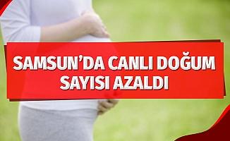 Samsun'da canlı doğum sayısı azaldı