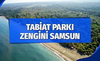 Tabiat parkı zengini Samsun
