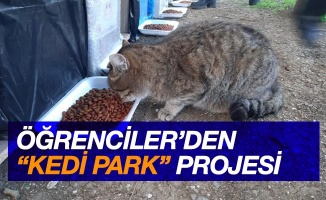 """Öğrencilerden """"Kedi Park Projesi"""""""
