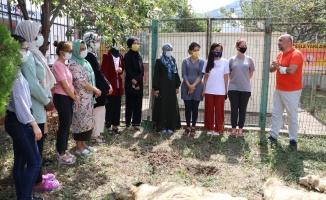 Kurbanlıklar yurtta kalan öğrenciler için kesildi